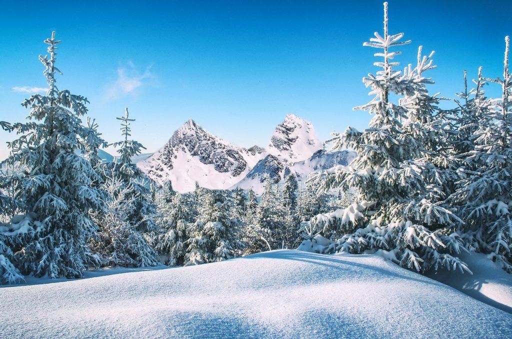 winter-1781654_1280